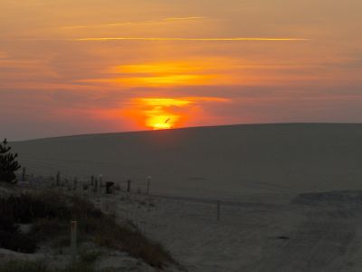 Catch the sunset with Bob's Wild Horse Tours
