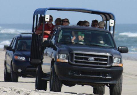 Bob's Corolla Wild Horse Tours, 4x4 Wild Horse Tours
